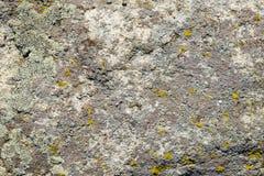 Stentextur av granitbakgrund med mossa Arkivfoton