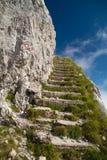 Stentrappa i bergen Arkivfoton