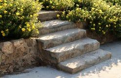Stentrappuppgång med lösa blommor, i Akko, Israel royaltyfri foto