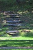 Stentrappuppgång som omges utanför av gräs under dagen arkivfoto