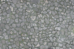 Stentrottoardetalj Arkivbild