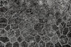 Stentrottoartextur Bakgrund för trottoar för granitkullersten asfull Abstrakt bakgrund av det gamla kullerstentrottoarslutet Arkivfoton