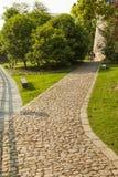 Stenväg i trädgård Royaltyfri Bild