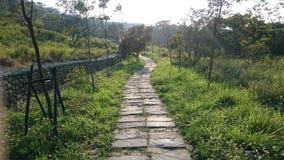 Stenväg på kullen Arkivbilder