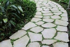 Stenväg på trädgården Arkivbilder