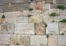 stenvägg fotografering för bildbyråer