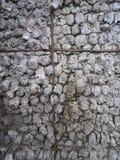 Stenvägg förutom byggnaden Royaltyfri Fotografi
