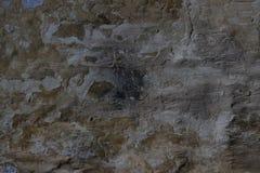Stenvägg med en multilayered gammal tumblingbortförklaringtextur Royaltyfri Foto
