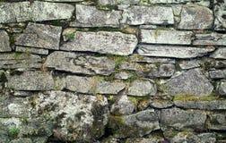 Stenvägg med mossigt och gräs Royaltyfria Foton