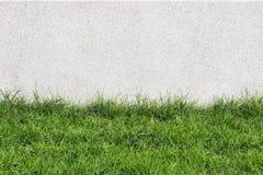 Stenvägg och flora med gräs i trädgårds- garnering Royaltyfri Fotografi