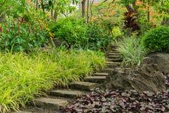 Stenvandringsled i trädgård Arkivfoto