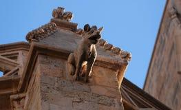 Stenvattenkastaredetalj på den Sant Miquel kyrkan Royaltyfri Foto