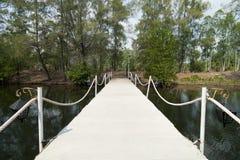 stenwalkway Arkivbilder