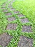 Stenwalkway i trädgård royaltyfri bild