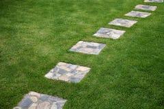 Stenwalkway i trädgård Arkivbild