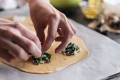 Step by step the chef prepares ravioli with ricotta cheese, yolks quail eggs and spinach with spices. The chef prepares the fillin. G on the dough Royalty Free Stock Images
