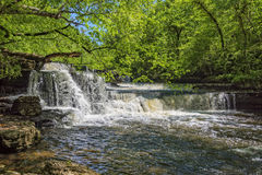 Step Falls At Old Stone State Park In Tennessee Royalty Free Stock Photography