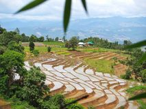 Step Field in Chiangmai. Field in Mae-Cham CNX Thailand Stock Photo