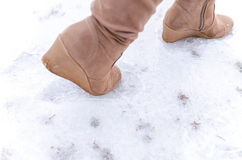 Step on frosted ground. Human step on frosted ground Royalty Free Stock Images