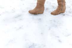 Step on frosted ground. Human step on frosted ground Stock Photo