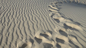 Free Step In Desert Royalty Free Stock Images - 28143089