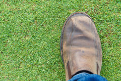 Step on a lawn-1 Royalty Free Stock Image