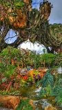 Floating Mountains in The World of Avatar at Disney`s Animal Kingdom. Step into Pandora, the World of Avatar inside Disney`s Animal Kingdom Resort. You will feel royalty free stock photos