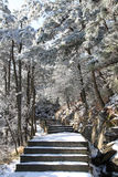 Step path covered with snow Royalty Free Stock Photos