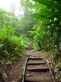 Step path up Tantalus Mountain Stock Photos