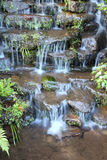 Step of small water fall Stock Images