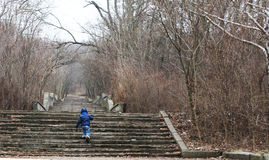 Step by step. Boy climbing the stairs in the park. concept of growing up. step by step. the child overcomes the path. the begining of the way Stock Images