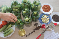 Step by step, the flavors come together. A woman hands are hard at work, stuffing cucumbers and dill into a pickling jar as she pr Stock Photos