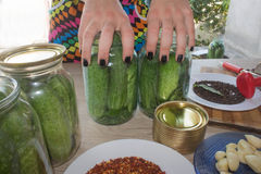 Step by step, the flavors come together. A woman hands are hard at work, stuffing cucumbers and dill into a pickling jar as she pr Stock Images