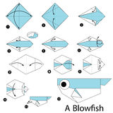 Step by step instructions how to make origami A Blow fish. Stock Photos