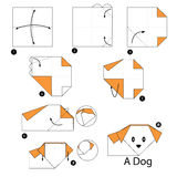 Step by step instructions how to make origami A Dog. Step by step instructions how to make origami Stock Images
