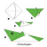 Step by step instructions how to make origami A Grasshopper. Royalty Free Stock Images