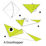 Step by step instructions how to make origami A Grasshopper. Royalty Free Stock Photos