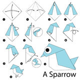 Step by step instructions how to make origami A Sparrow. Royalty Free Stock Images