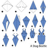 Step by step instructions how to make origami A Stag Beetle Stock Photography