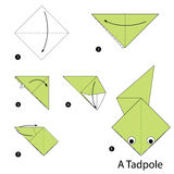 Step by step instructions how to make origami a Tadpole. Royalty Free Stock Photos