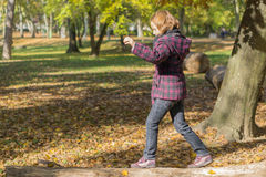 Step by step. Young girl balancing on fallen tree trunk Royalty Free Stock Image