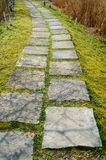 Step Stone Path 2 Royalty Free Stock Photography