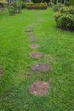 Step Stone Pathway Stock Image