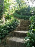 Step on to the secret  green garden. Step on to the quiet secret garden Royalty Free Stock Photos