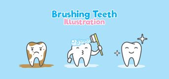 Step of Tooth cute cartoon character shower meaning Brushing. Step of Tooth cute cartoon character shower meaning Brushing clean teeth illustration vector on Stock Photos