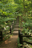 Step Trail In Woods. A step trail along a wooden fence at a state park in Wisconsin Stock Images