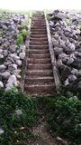 Step up. By the stone stair Stock Images
