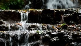 Step of the waterfall stock video footage