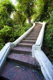 Step way in the garden II Stock Photos