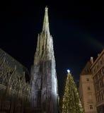 Stephansdom Βιέννη Στοκ εικόνες με δικαίωμα ελεύθερης χρήσης